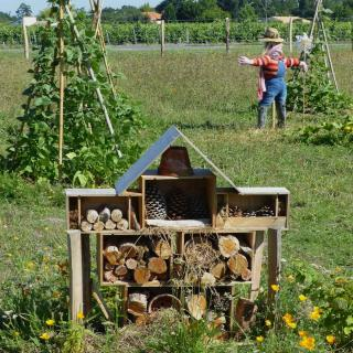 Definition of permaculture