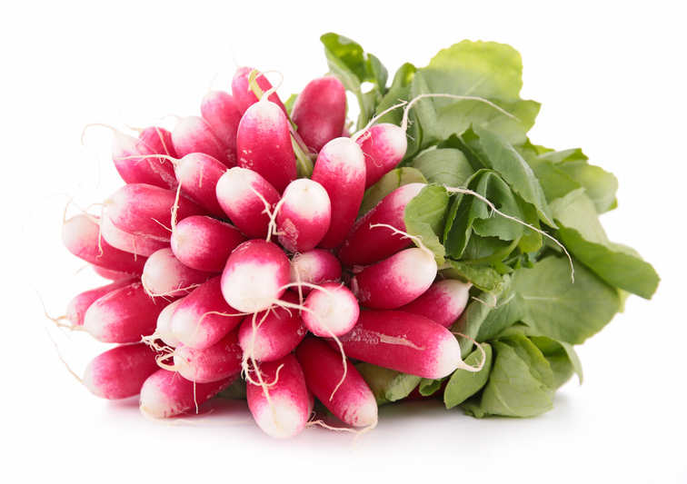 Radish, an all-season favorite