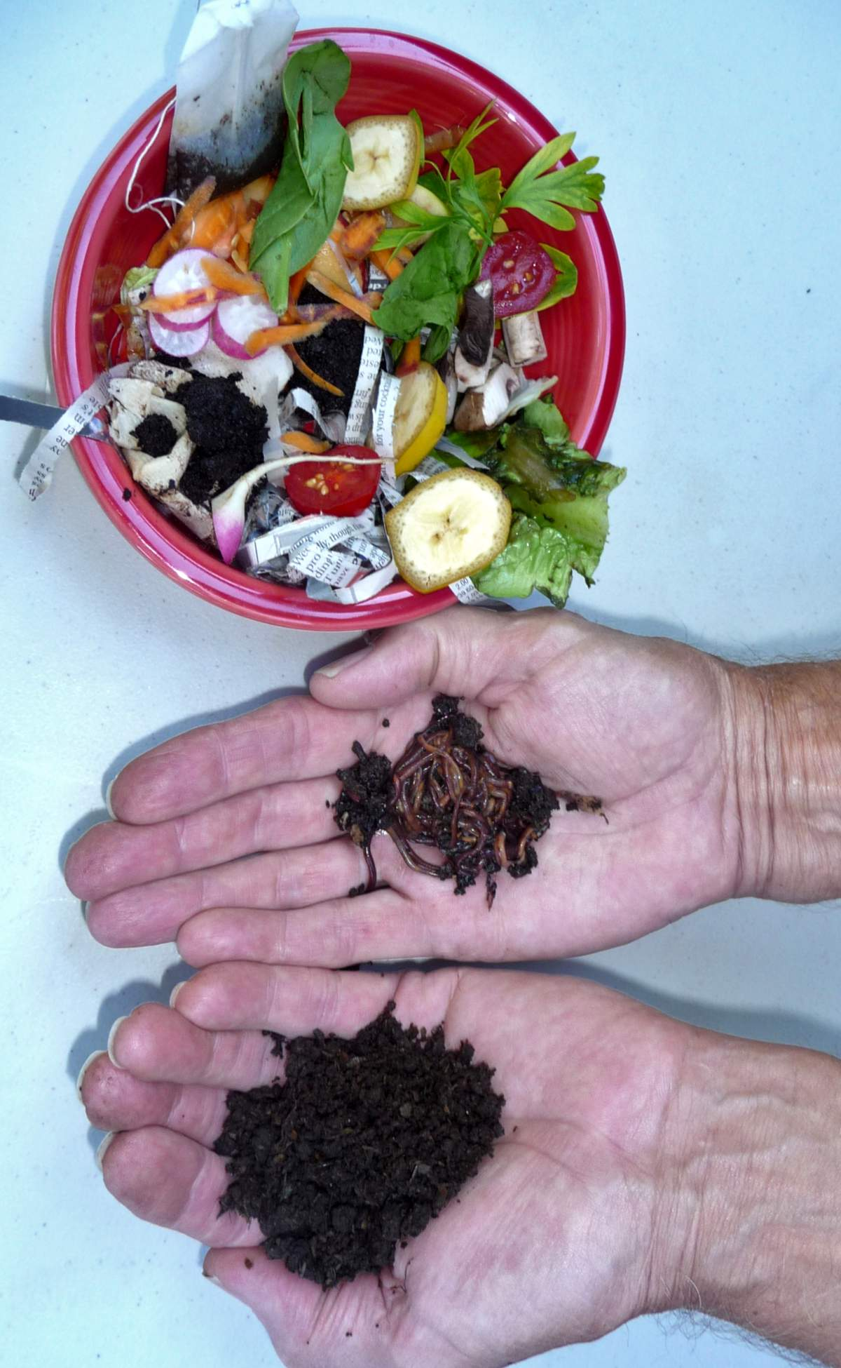 Kitchen waste converted to compost in an appartment composter