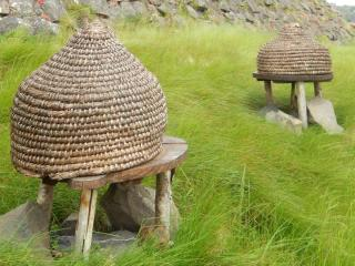 Straw wicker hive on stones