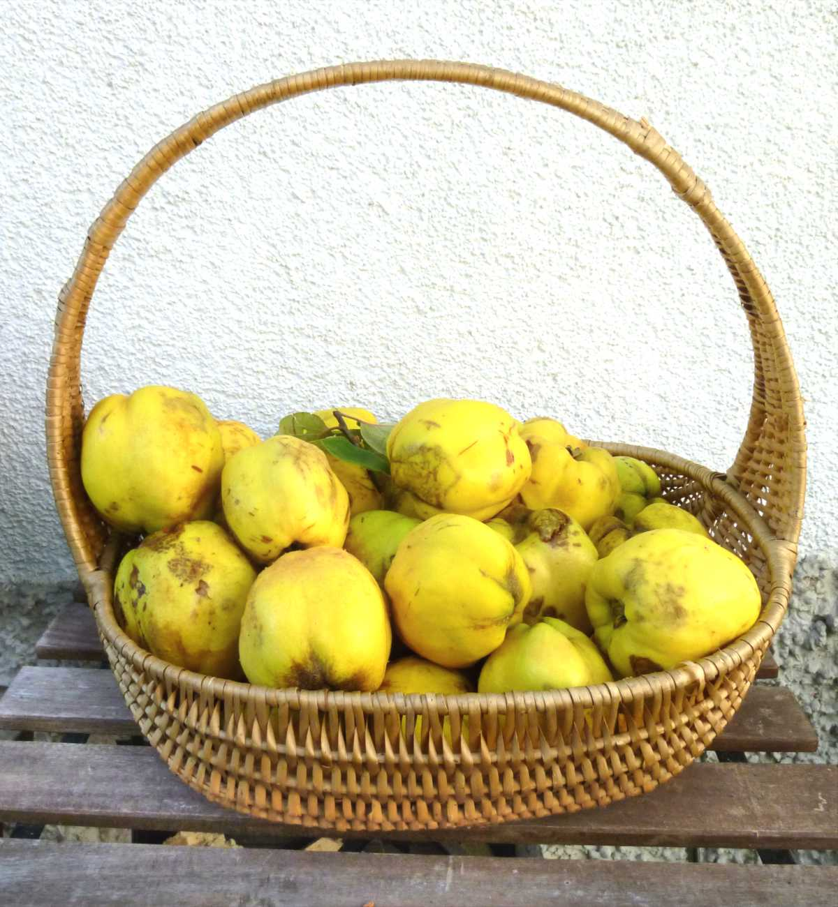 Healthy basket of quince fruits