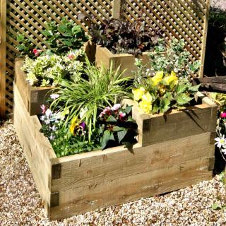 Square-foot organic vegetable patch