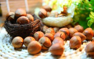 Hazelnuts cracked open displayed to show their health benefits.