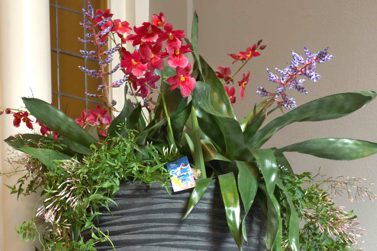 Indoor flower arrangement for winter flower plants