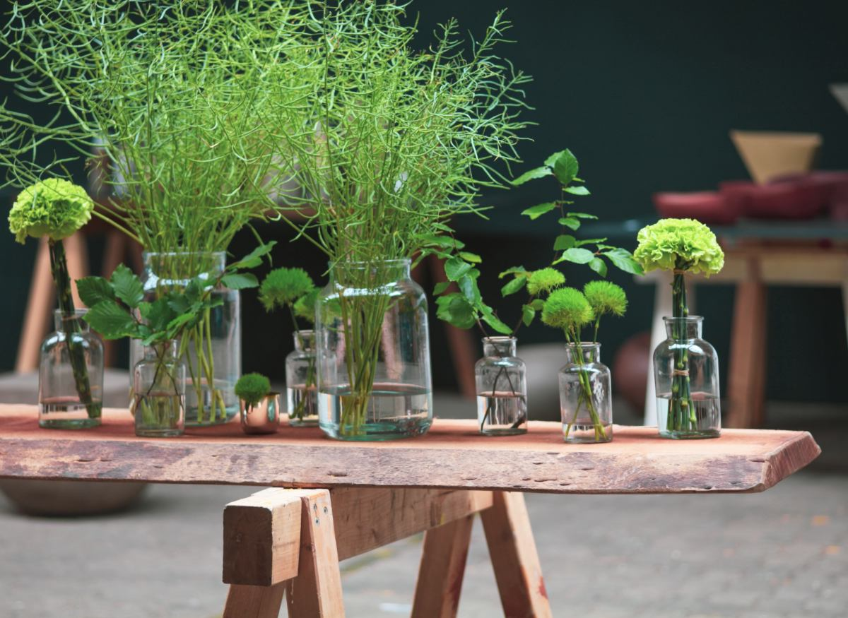 Potions with plants on a bench, fertilizers and treatments
