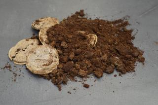 Used coffee grounds, with a few filters, collected on a gray tabletop before being used in the garden.