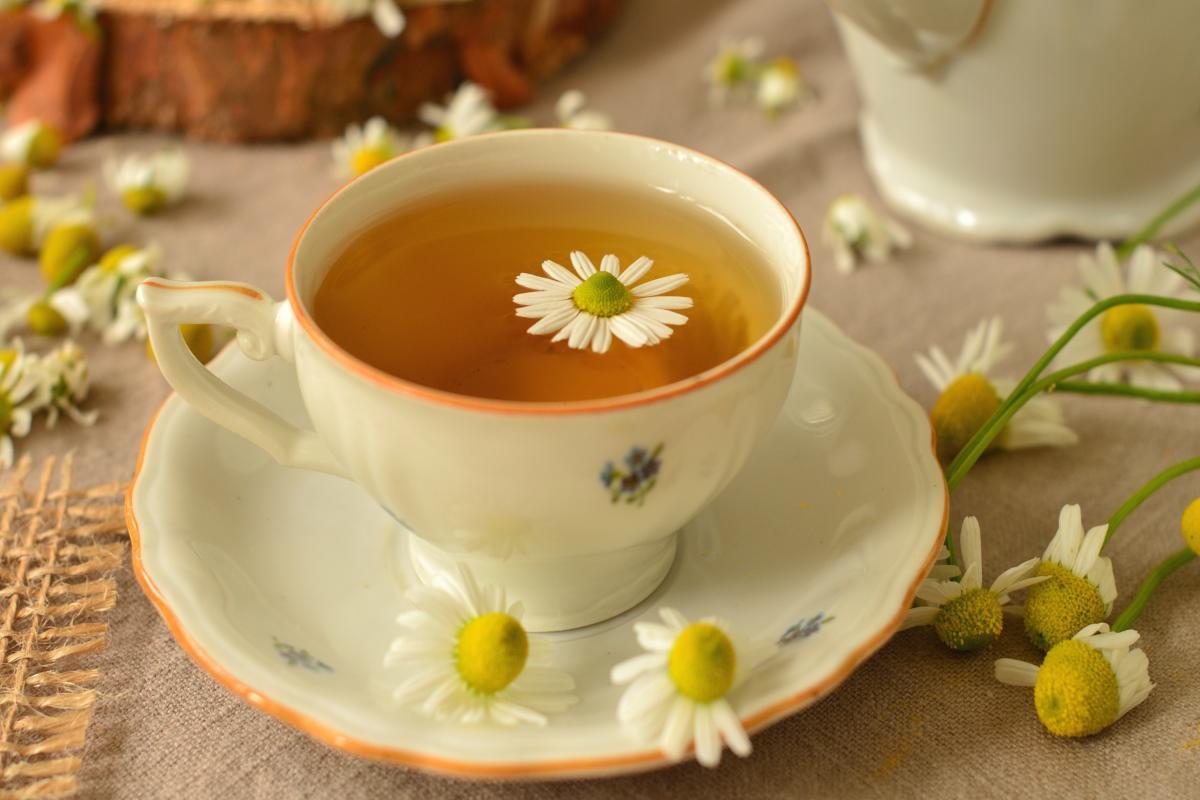 Teacup with roman chamomile tea.