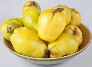 Qionce fruit in a golden-lined bowl