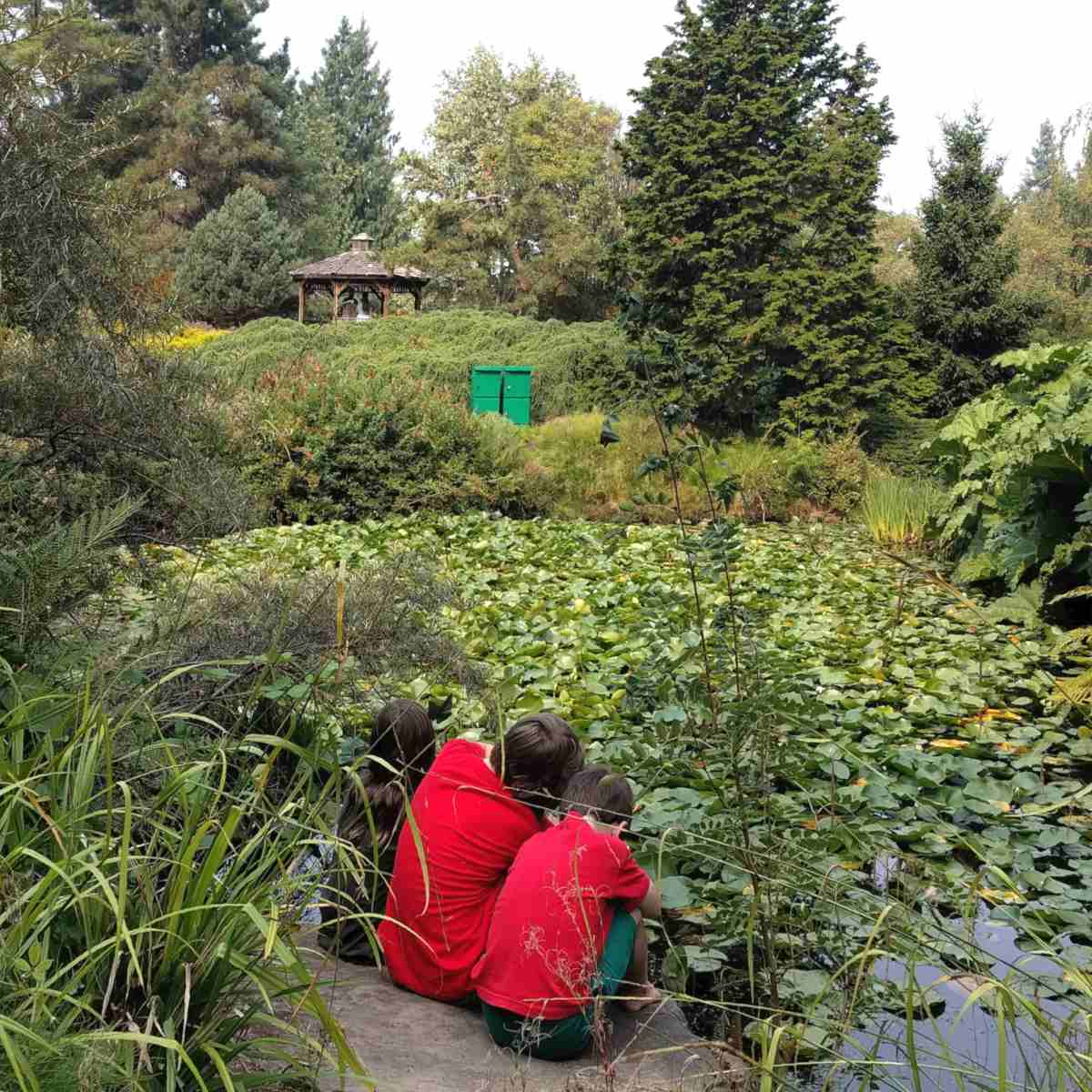 A huddle area near a pond in the garden