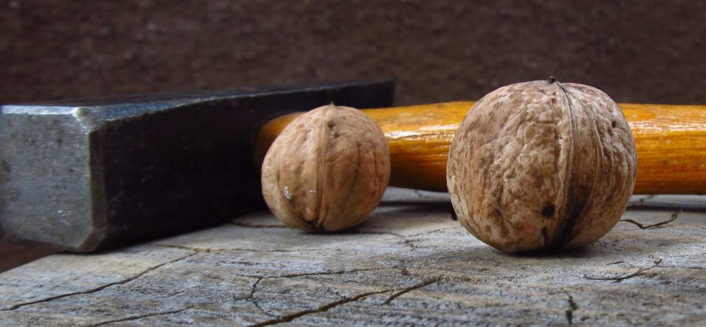 Two walnuts and a hammer