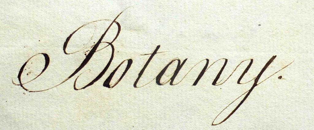 Botany written on a page
