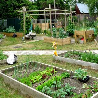 Empty shared community garden