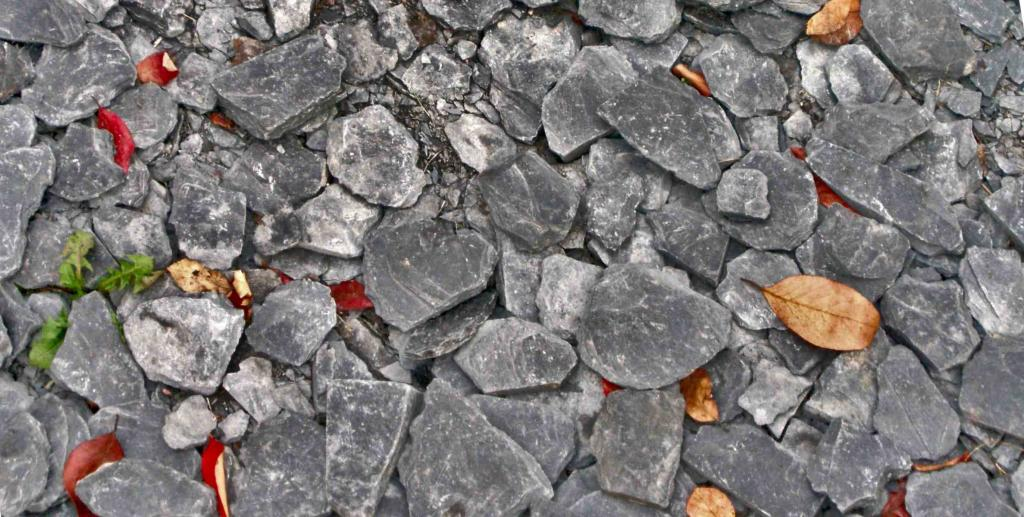 Slate chips used for mulching.