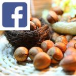 Picture related to Hazelnut health benefits overlaid with the