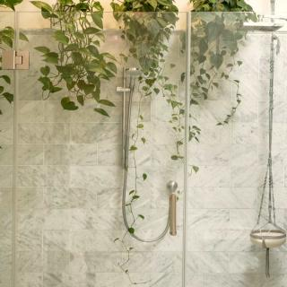 Plants for the bathroom, like this pothos around a shower