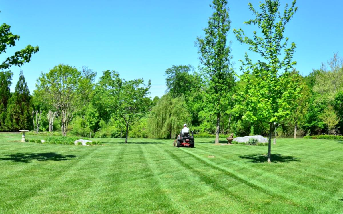 Lawn mower with large, perfect green lawn