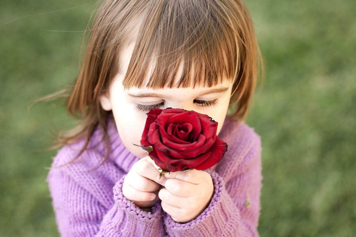 Child sniffing a fragrant rose around the house