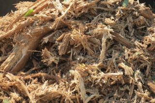 Mulch from wood shreds