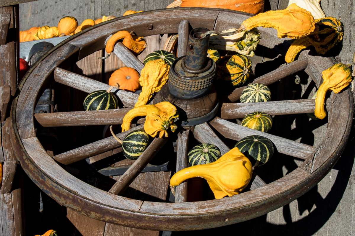 Permaculture principles is like a flywheel building up speed