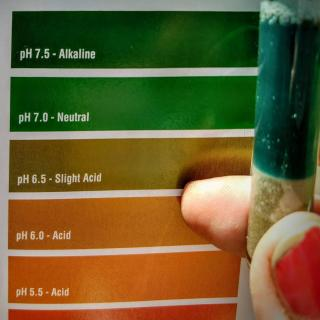 pH testing with tubes