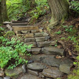 Stairways and walkways in a garden with a steep slope