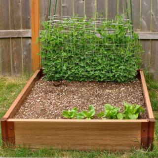 Square-foot gardening bed