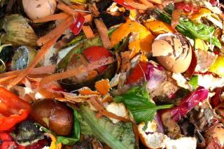 Food for worms in a vermicompost