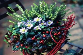 Inspirational ideas for garden boxes in winter